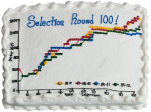 Cake Celebrating 100 rounds 2018