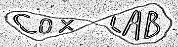 Cox lab logo