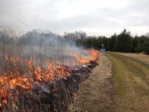 2016 Prairie burn