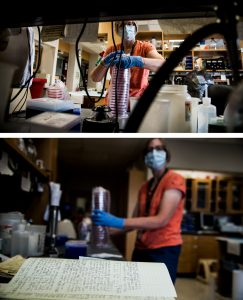 Photos of Liz Wood in lab masked for pandemic